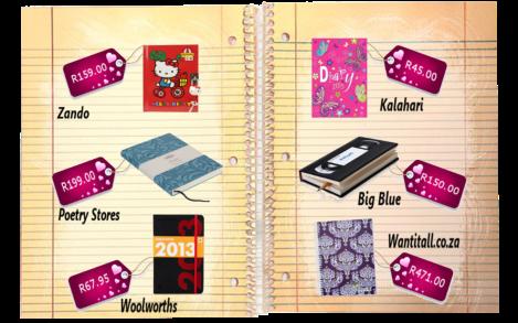 diaries 2013