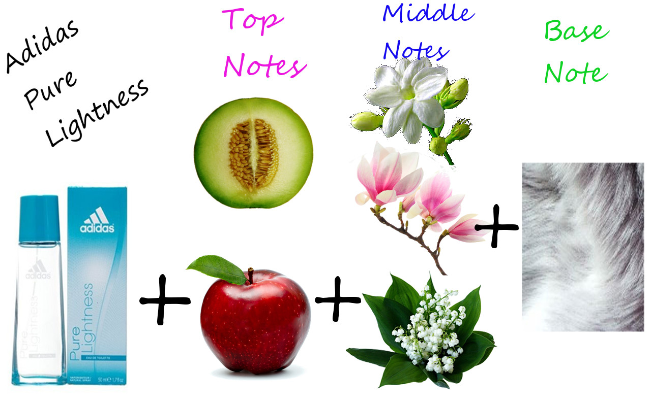 top middle base notes pdf