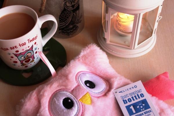 City Girl Vibe Owl winter goodies