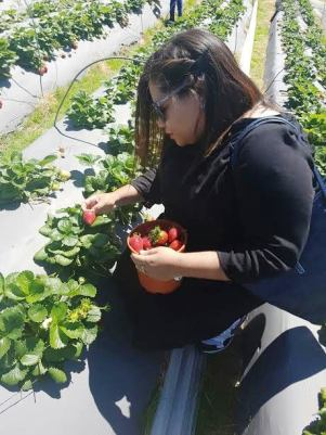 city-girl-vibe-strawberry-picking1