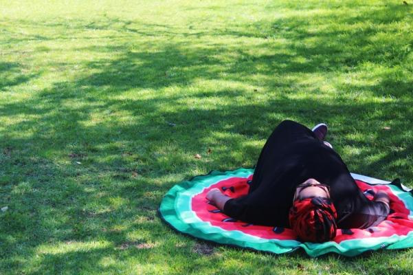 city-girl-vibe-x-kirstenbosch-national-botanical-gardens-picnic