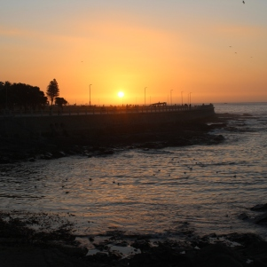 city-girl-vibe-x-cape-town-seapoint-sunset