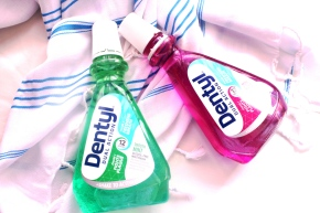 {Review} Dentyl Dual Action Mouthwash